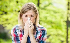 Bệnh hô hấp mùa hanh khô: Nhiễm trùng xoang hay viêm phế quản chưa phải tất cả