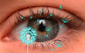 Viêm kết mạc dị ứng là gì? (Đau mắt đỏ dị ứng là gì) và những điều cần biết về bệnh