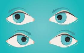 Tổng hợp các bài tập yoga cho mắt sáng khỏe để phòng tránh bệnh đau mắt đỏ