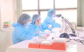 Quy trình xét nghiệm khẳng định nhiễm Covid-19 được triển khai như thế nào?