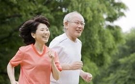 Sau 60 tuổi có nên tập gym?