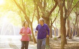 Người bị huyết áp thấp nên tập luyện như thế nào?