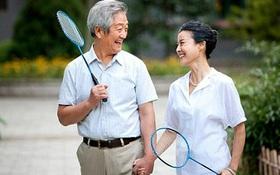 Tập thể dục an toàn cho người cao tuổi