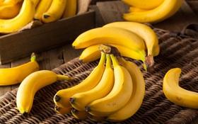 Tối ưu hóa hiệu suất tập gym bằng dinh dưỡng