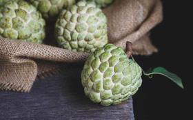 Là loại quả được ưa chuộng vào mùa thu nhưng nhiều người chưa biết ăn na đúng cách