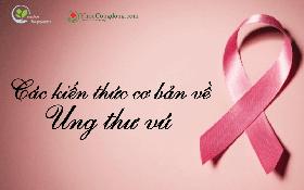 Các kiến thức cơ bản về ung thư vú bạn nên biết