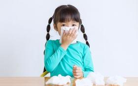 Tìm hiểu những nguyên nhân gây viêm xoang ở trẻ