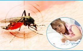 PGS.TS Nguyễn Tiến Dũng: Trẻ mắc sốt xuất huyết không uống thuốc oresol, chỉ uống nước lọc có nguy cơ mất nước trầm trọng