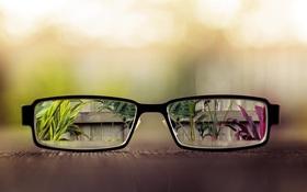 Người bị cận nhẹ có nên đeo kính cận không? Cận bao nhiêu độ thì cần đeo kính?