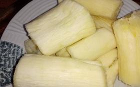 10 loại rau củ gây ngộ độc nghiêm trọng nếu không được chế biến kỹ