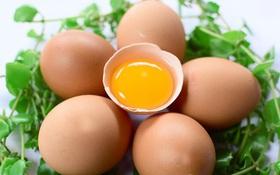 Người bị cao huyết áp có nên ăn trứng gà không?
