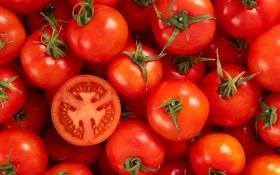Ăn cà chua sống có tác dụng gì? Ăn cà chua sống thế nào là đúng cách?