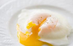 Ăn trứng gà trần có tốt không? Ăn trứng gà trần hay trứng gà chín tốt hơn?