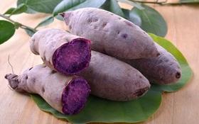 Công dụng của khoai lang tím: Rau lang tím có ăn được không?