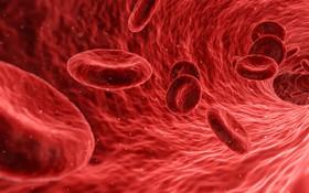 Đã có hi vọng về thuốc điều trị ung thư máu
