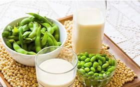 Điểm danh những thực phẩm bổ sung progesterone giúp cân bằng nội tiết tố