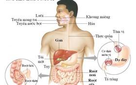 Giật mình trước sự nguy hiểm của ung thư đường tiêu hoá