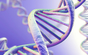 Độ tuổi, sinh sản và nguy cơ ung thư buồng trứng - mối liên hệ không ai ngờ đến