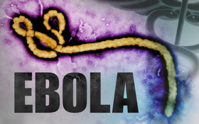 Bệnh Ebola: Ai là những người có nguy cơ mắc căn bệnh này?