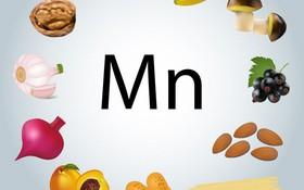 Mangan là gì? Những điều cần biết về mangan trong cơ thể con người