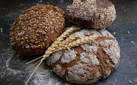 9 tác dụng của bánh mì đen đối với sức khỏe: Ngừa ung thư, hỗ trợ giảm cân