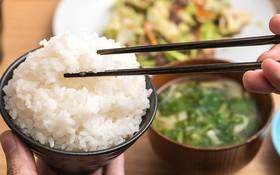 Ăn nhiều cơm có tốt không? 7 tác hại khi ăn nhiều cơm trắng