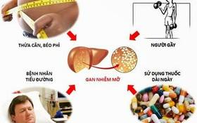 Tổng hợp những hiểu lầm về gan nhiễm mỡ thường gặp