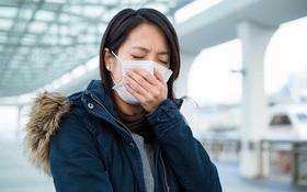Những điều cần biết về cách phòng tránh hen suyễn dị ứng