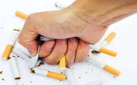 Tác hại của thuốc lá: Cứ 2 người hút lại có 1 người chết, bỏ ngay để hưởng những lợi ích này