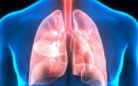 Phương pháp lọc phổi đơn giản ai cũng có thể thực hiện