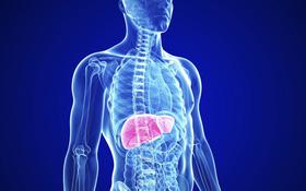 Tổng hợp các yếu tố làm tăng nguy cơ xơ gan cần lưu ý