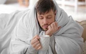 Giúp làm giảm cảm giác ớn lạnh do sốt siêu vi gây ra