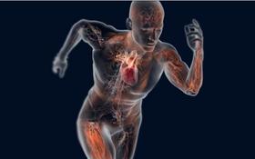 Nhận biết 6 dấu hiệu bạn đang trao đổi chất kém, cẩn thận tăng cân trước Tết