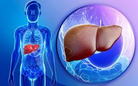 Tìm hiểu về các phương pháp điều trị xơ gan mất bù phổ biến nhất hiện nay