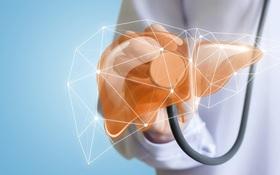 Tổng hợp chung về các phương pháp chẩn đoán xơ gan