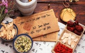Món ăn bài thuốc cho người xơ gan giúp điều trị bệnh hiệu quả