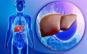 Ung thư gan: nguyên nhân, dấu hiệu, tầm soát, điều trị và cách phòng ngừa