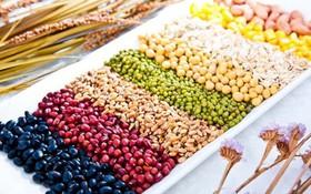 Điểm danh 10 loại thực phẩm tốt cho phổi