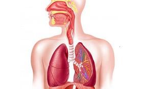 Lưu ý khi điều trị viêm phổi tại nhà cho người lớn và trẻ em