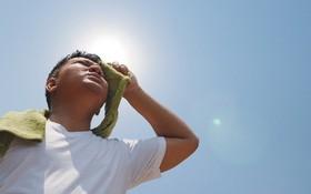 Trời nắng nóng cần làm gì để tránh say nắng, sốc nhiệt, đột quỵ?