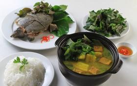 Mách bạn 5 món ăn cực tốt cho người bệnh thoát vị đĩa đệm