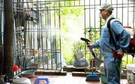 Những điều cần biết trước khi sử dụng các dịch vụ phun hóa chất diệt muỗi, phòng bệnh sốt xuất huyết