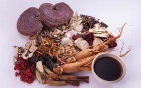 Những bài thuốc Đông y hỗ trợ hạn chế biến chứng của bệnh gout