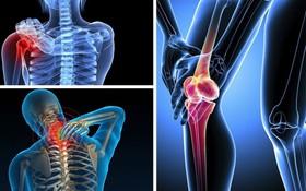Phân biệt đau nhức xương khớp do loãng xương và cơn đau do các bệnh khác