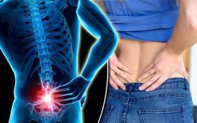 Nên bỏ ngay những thói quen xấu này để tránh bị đau cột sống lưng