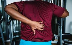 Nguyên nhân đau lưng mãn tính chủ yếu là do bệnh lý gây ra