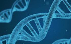 Bệnh cong vẹo cột sống có di truyền không?