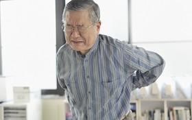 Đau lưng ở người già nguyên nhân là gì? Hướng dẫn phòng tránh và điều trị
