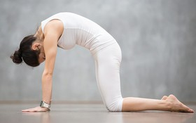 Các bài tập giảm đau xương khớp