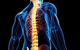 Bệnh thoái hoá cột sống: Nguyên nhân, triệu chứng và cách phòng ngừa